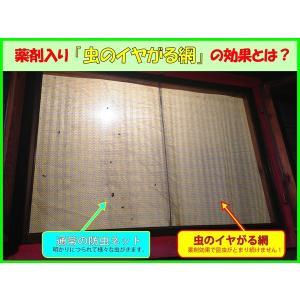 ダイオ化成 網戸 網戸張り替え 防虫ネット 虫のイヤがる網 (約):幅90cm×長さ2m 色:ブラック diokasei 02