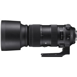 SIGMA シグマ 60-600mm F4.5-6.3 DG OS HSM [ニコン用]|directhands