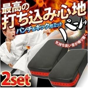 パンチキックミット 2個セット トレーニング ボクシング キックボクシング ストレス解消 パンチングミット キックミット 格闘技 練習 ダイエット