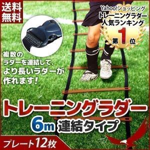 トレーニングラダー 6m 連結タイプ  トレーニング用品 サ...