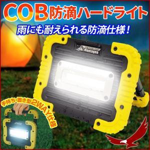 アウトドアや夜間の照明 防災グッズとして便利  持ち手がついているので持ち運びラクラク♪ 置型にもな...