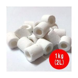 高性能 ろ材 バイオグラスリング 業務用 1kg(2L)|discountaqua2