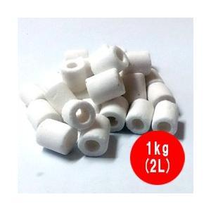高性能 ろ材 バイオグラスリング ミニ 業務用 1kg(2L)|discountaqua2