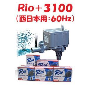 カミハタ Rio+3100(西日本用:60Hz) リオプラス 水中ポンプ 水槽用|discountaqua2