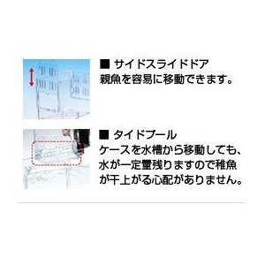 日動 産卵ケース ベビーボックスプラス 産卵箱 水槽用|discountaqua2|03
