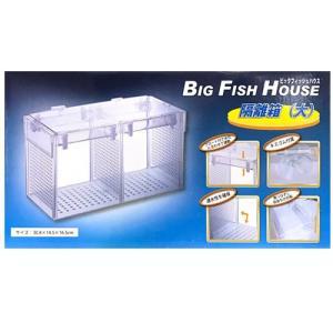 アズー 隔離箱(大) ビッグフィッシュハウス BIGFISHHOUSE 水槽用|discountaqua2