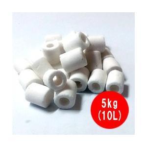 高性能 ろ材 バイオグラスリング ミニ 業務用 5kg(10L)|discountaqua2