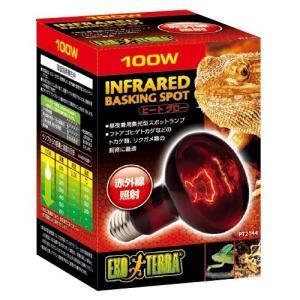 GEX エキゾテラ ヒートグロー 100W 赤外線照射スポットランプ PT2144 爬虫類用 照明器具|discountaqua2