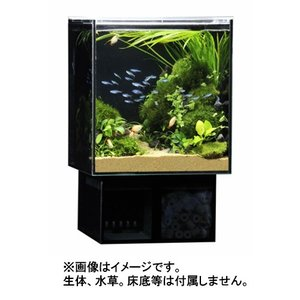 GEX グラステリア アグス ブラック OF-230 オールガラス オーバーフロー水槽 LEDライト付 淡水・海水両用 GlassteriorAGS OF230|discountaqua2