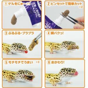 国産 キョーリン レオパゲル 60g 半ねりタイプ 昆虫食爬虫類の栄養食 爬虫類フード 餌 discountaqua2 06