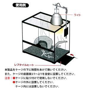 GEX レプタイルヒート XS 6W 爬虫類用パネルヒーター|discountaqua2|04