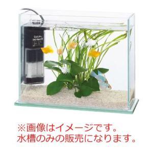 水作 グラスガーデン S300 ガラス水槽 30cm フレームレス スリム水槽|discountaqua2