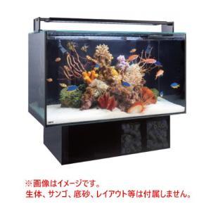 GEX グラステリア アグス ブラック OF-450 オールガラス オーバーフロー水槽 LEDライト付 淡水・海水両用 GlassteriorAGS OF450 discountaqua2 02