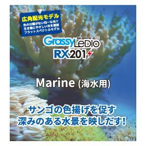 新商品 ボルクスジャパン グラッシーレディオ RX201 マリン 海水用 サンゴ LEDライト|discountaqua2