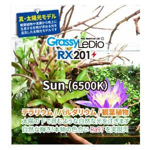 新商品 ボルクスジャパン グラッシーレディオ RX201 サン テラリウム パルダリウム 観葉植物 LEDライト|discountaqua2