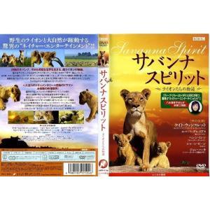 サバンナ スピリット ライオンたちの物語|中古DVD|disk-kazu-saito