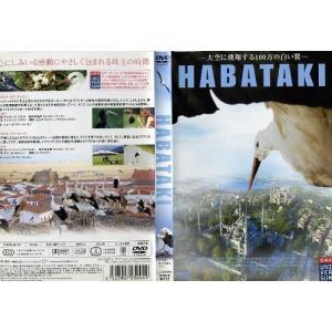 HABATAKI|中古DVD|disk-kazu-saito
