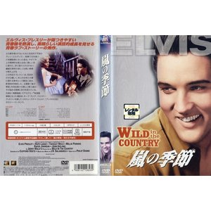 嵐の季節 WILD in the COUNTRY (1961年) [字幕]|中古DVD|disk-kazu-saito