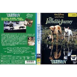 三匹荒野を行く The Incredible Journey|中古DVD|disk-kazu-saito