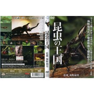 昆虫の王国 [監修:海野和男]|中古DVD|disk-kazu-saito