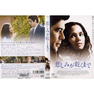 悲しみが乾くまで|中古DVD|disk-kazu-saito