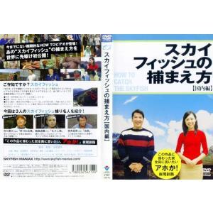 スカイフィッシュの捕まえ方 【国内編】|中古DVD|disk-kazu-saito
