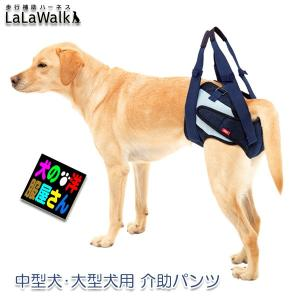 足腰の弱くなったワンちゃん・高齢犬・老犬介護にオススメの介助パンツです。  品番・色番:2TA008...