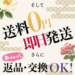 浴衣 レディース セット 京都本格 選べる20...の詳細画像3