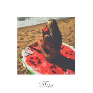 送料無料Dita(ディータ)ビーチマット(すいか)(小物)ビーチ ラウンド ヨガマット 海 プール インスタ(ゆうパケット0)|dita