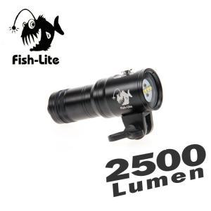 【水中ライト】i-DIVESITE 2500ルーメン LED水中ライト Fish-Lite V25 【FL-6118】[706840480000] diving-hid