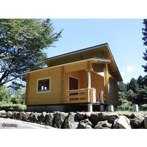 差し掛け屋根のおしゃれな外観でロフト付きログハウス。ロフト、吹き抜け、デッキ付きの欲張りログハウス。【BL-M30】|diy-kithouse