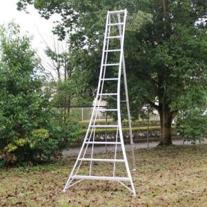 アルインコ(ALINCO) アルミ製園芸三脚 シルバー 天板高さ:3.48m KWX360 1台
