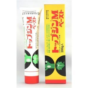 ニッソーグリーン トップジンMペースト 切り口...の関連商品1