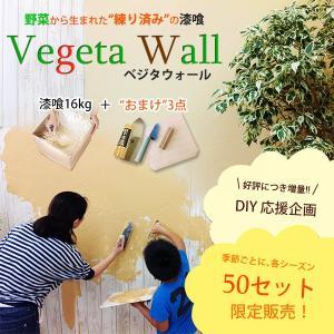 ベジタウォール 練り済み漆喰 DIY はじめてセット(漆喰16kg+道具3点)