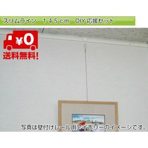 壁面、天井面兼用ですので取り付けが便利です。  レールフックとワイヤースリムフックをセット致しました...