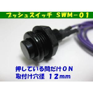 オプションスイッチ(SWM−01) diystore-pcp