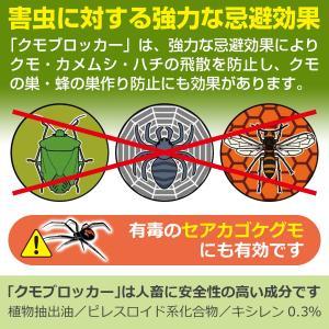 クモ・カメムシを寄せ付けない 魔法のスプレー「クモブロッカー」|diystyle|03