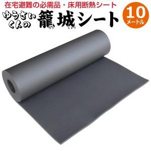 防災グッズ 床用断熱シート ゆうさいくんの籠城シート10m 本当に必要なもの 必需品 最低限 床 底冷え 対策 床用 断熱シート