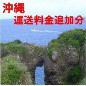 沖縄 運送料金追加分|diyvaluecare