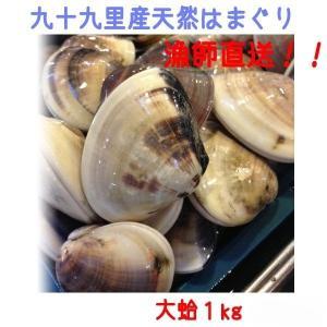 天然はまぐり 1kg 大サイズ 千葉県九十九里産 漁師直送 大蛤 お祝い 新鮮 採れたて!