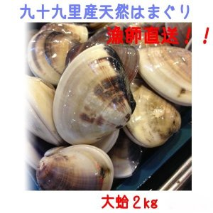 千葉県九十九里産 天然大はまぐり 2kg 漁師直送