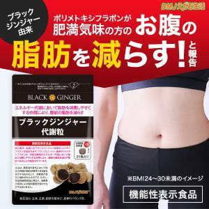 ブラックジンジャー代謝粒 31日分 機能性表示食品 DMJえがお生活 黒しょうが 黒生姜 黒生姜サプ...