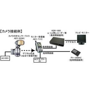 ビデオカメラ付きセンサーライト 携帯型カラーLCDモニター デジタルビデオレコーダー ナイトウォッチャー 標準セットC 送料無料 dmkenzaiichiba 04