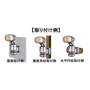 ビデオカメラ付きセンサーライト 携帯型カラーLCDモニター デジタルビデオレコーダー ナイトウォッチャー 標準セットC 送料無料 dmkenzaiichiba 05