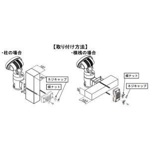 ビデオカメラ付きセンサーライト 携帯型カラーLCDモニター デジタルビデオレコーダー ナイトウォッチャー 標準セットC 送料無料 dmkenzaiichiba 06