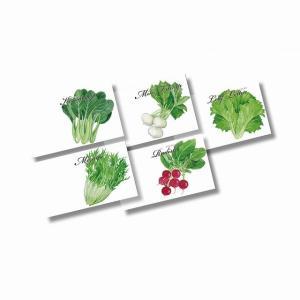 横型イラスト種子1個(野菜) ★ロット割れ不可 500個単位でご注文願います|dnetmall