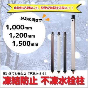不凍水栓柱 1000mm ドレンマスセット付 蛇口なし 庭 ガーデン 水道 凍結 水抜き 防止 MGA-319|doanosoto