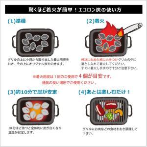 炭 着火剤 簡単 長持ち キャンプ バーベキュー ココナツ ヤシガラ HIRAKI エコロン炭 2kg HK|doanosoto|03