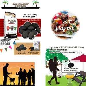 炭 着火剤 簡単 長持ち キャンプ バーベキュー ココナツ ヤシガラ HIRAKI エコロン炭 2kg HK|doanosoto|05