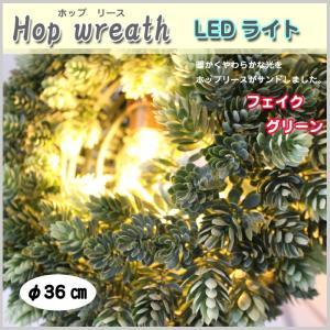 リース LEDライト ホップリース 照明 リビング ディスプレイ フェイクグリーン プレゼント カフェ 店舗 オリジナル BN|doanosoto